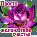 https://dp.mycdn.me/getImage?photoId=836313675568&type=4